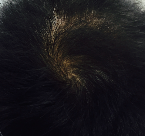 毛活328日目。2015年12月21日撮影